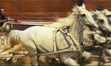 caballos en carrera de cuadriga con jinete