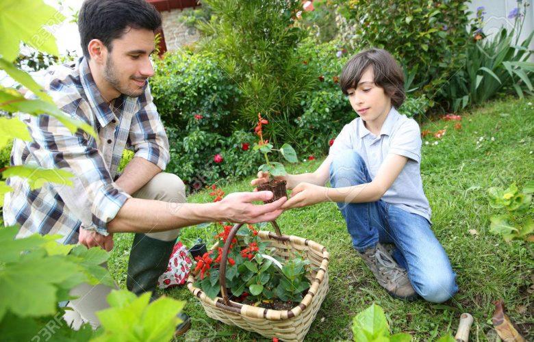 jardinería para todos