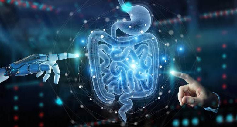 Sistema digestivo y probióticos